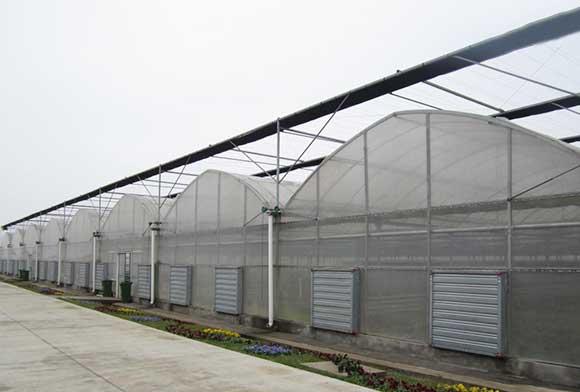 温室连栋大棚工程