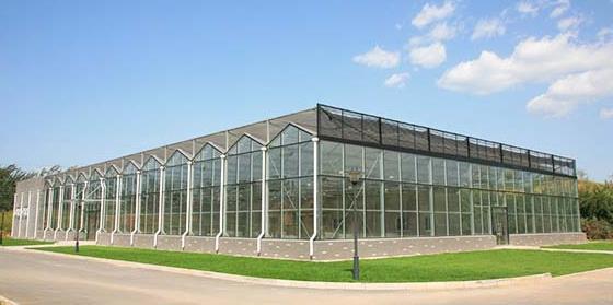 蔬菜温室大棚如何选择位置?